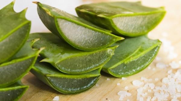 Les effets secondaires de la pulpe d'aloe vera pour maigrir