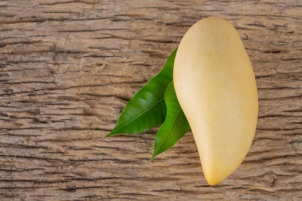 Les bienfaits de la mangue dans un régime